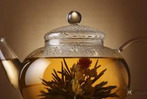 bitkiler asirlardir cay olarak kullaniliyor 290x195 - Bitkiler Çay Olarak Asırlardır Kullanılıyor