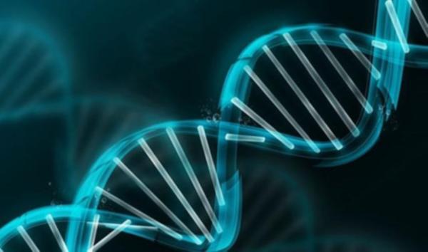 Bozuk genleri tedavi edecek ilaç geliyor