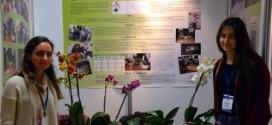 lise ogrencileri bitki yapraklarindan enerji elde etti 272x125 - Lise Öğrencileri Bitki Yapraklarından Enerji Elde Etti