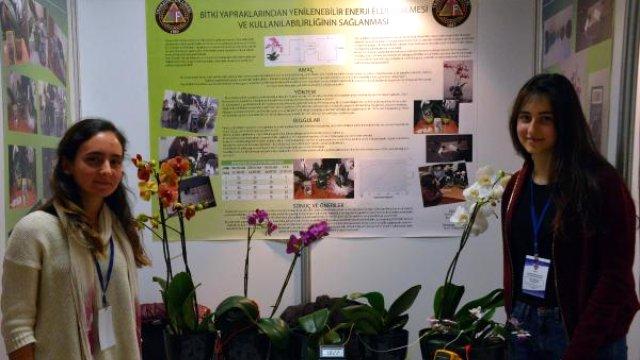 Lise Öğrencileri Bitki Yapraklarından Enerji Elde Etti
