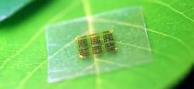 odundan doga dostu bilgisayar islemcisi yapildi 272x125 - Odundan Doğa Dostu Bilgisayar İşlemcisi Yapıldı
