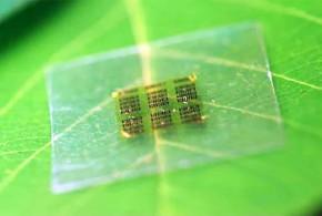 odundan doga dostu bilgisayar islemcisi yapildi 290x195 - Odundan Doğa Dostu Bilgisayar İşlemcisi Yapıldı
