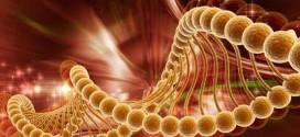 13 kansere karsi tek ilac 272x125 - 13 kansere karşı tek ilaç