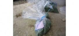 taze meyve ve sebzelerde hasat oncesi zirai ilac denetimi 272x125 - Taze Meyve ve Sebzelerde Hasat Öncesi Zirai İlaç Denetimi