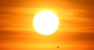bingol belediyesi gunes enerji santrali kuracak 310x165 - Bingöl Belediyesi güneş enerji santrali kuracak