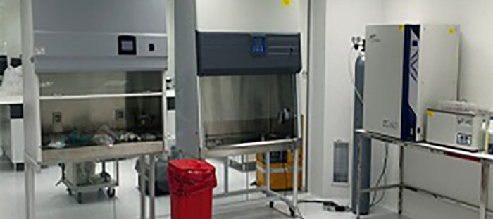 Biyoteknolojik ilaç üretiminde ilk adım
