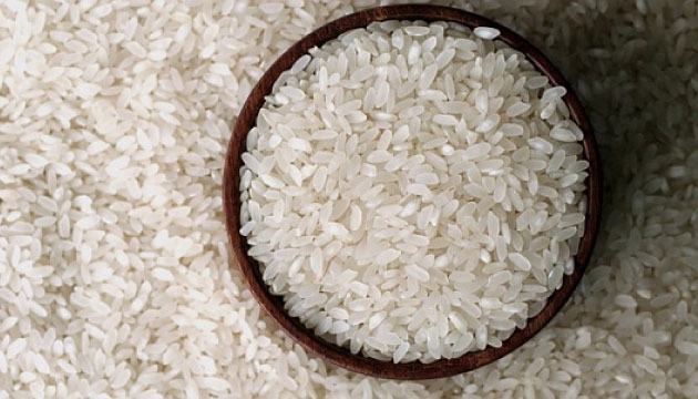 Çin Plastik Pirinç Üretti