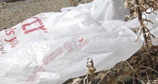 almanya plastik posete savas acti 310x165 - Almanya plastik poşete savaş açtı