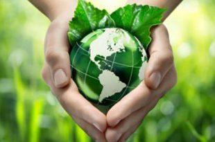 yapay yaprak bilim insanlari karbondioksiti yakita cevirdi 310x205 - Yapay Yaprak : Bilim İnsanları Karbondioksiti Yakıta Çevirdi