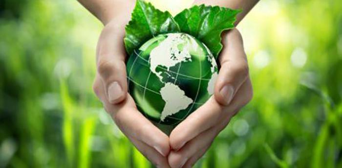 Yapay Yaprak : Bilim İnsanları Karbondioksiti Yakıta Çevirdi