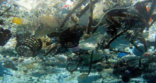 okyanuslardaki plastigi temizleyecek proje 310x165 - Okyanuslardaki Plastiği Temizleyecek Proje