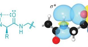 olagandisi hidrojen baglari proteinlerde kimyacilarin dusundugunden daha buyuk bir rol oynuyor 310x165 - Olağandışı hidrojen bağları proteinlerde kimyacıların düşündüğünden daha büyük bir rol oynuyor