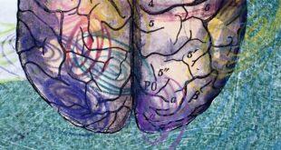 ses otesi dalgalarla asilama yontemi beyin damarlarindaki bariyerleri asmayi basardi 310x165 - Ses Ötesi Dalgalarla Aşılama Yöntemi Beyin Damarlarındaki Bariyerleri Aşmayı Başardı