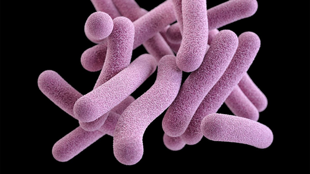 Basit bir test, tüberkülozu kolaylıkla tespit edebiliyor