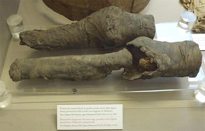 Gaz Kromatografisi Mumyalanmış Bacakların Mısır'ın Kayıp Kraliçesine Ait Olduğunu Ortaya Çıkardı