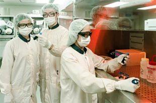 arastirmacilar esnek elektronik alaninda onemli bir atilim yapiyor 310x205 - Araştırmacılar, esnek elektronik alanında önemli bir atılım yapıyor