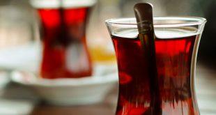 cay uretiminde kimyasal gubre uygulamasi yasaklandi 310x165 - Çay üretiminde kimyasal gübre uygulaması yasaklandı