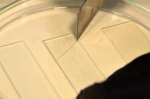 yuzde 95 kendini onarabilen polimer malzeme gelistirildi 310x205 - Yüzde 95 kendini onarabilen polimer malzeme geliştirildi