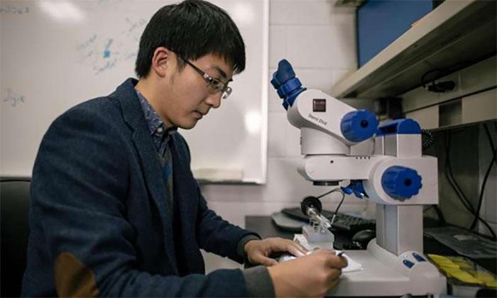 Yüksek Teknolojili Seramik Malzemeler için Elektrik Alanla Desteklenmiş Yeni Bir Teknik Geliştirildi