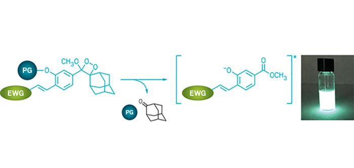 Işık Oluşturan Haberci Moleküller Hücreyi İzlemeyi Kolaylaştırır