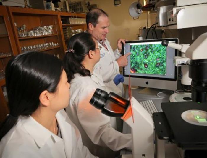 Nanopartiküller Tarafından Verilen İlaç Kombinasyonu, Melanom Tedavisine Yardımcı Olabilir