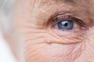 bilim insanlari yasli ve hasarli hucreleri yok etmenin yolunu kesfetti 310x205 - Bilim İnsanları Yaşlı ve Hasarlı Hücreleri Yok Etmenin Yolunu Keşfetti!