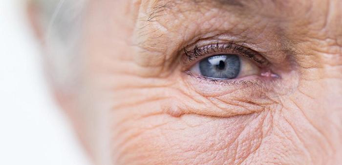 Bilim İnsanları Yaşlı ve Hasarlı Hücreleri Yok Etmenin Yolunu Keşfetti!