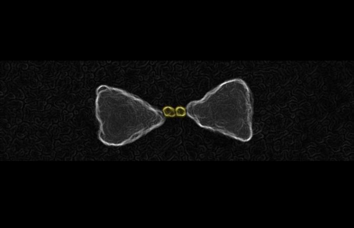 Güneş Işığını Daha Kolay Toplayan Nanomalzemenin Sırrı