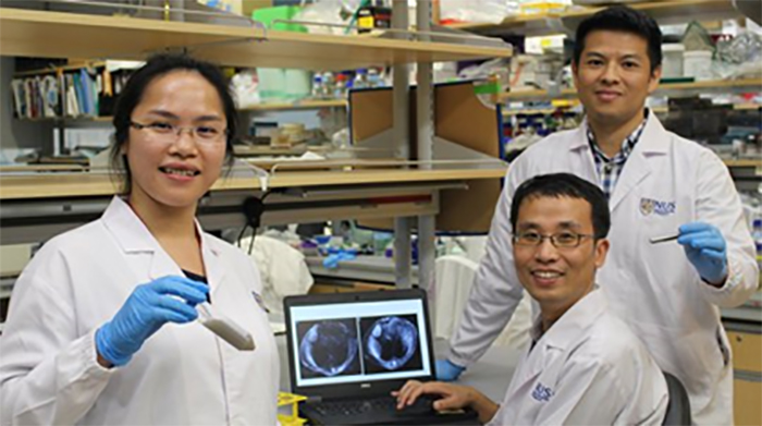 Bilim Adamları Kanserli Karaciğeri Görüntüleyen Boya Geliştirdiler