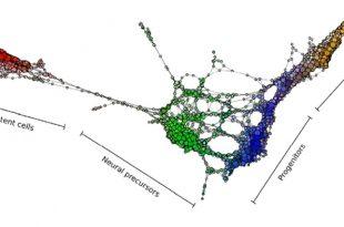 yeni arac hucre gelistirme yol haritasi sagliyor 310x205 - Yeni Araç Hücre Geliştirme Yol Haritası Sağlıyor