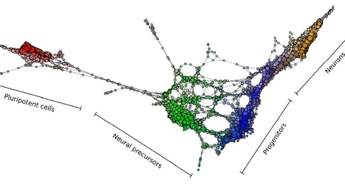 Yeni Araç Hücre Geliştirme Yol Haritası Sağlıyor