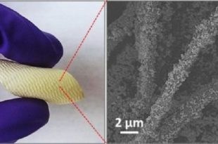 kimyasal silahlara karsi hayat kurtaran yeni kumas kaplamasi 310x205 - Kimyasal Silahlara Karşı Hayat Kurtaran Yeni Kumaş Kaplaması
