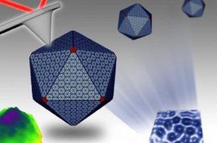 nanoteknoloji bakteriyel mekanizmanin gizemini bozuyor 310x205 - Nanoteknoloji Bakteriyel Mekanizmanın Gizemini Bozuyor