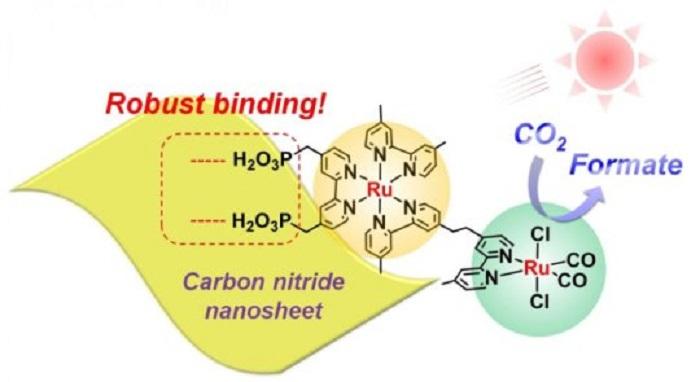 Rutenyum ile Kaplı Yeni Karbon Nitrür Malzeme Suda Görünür Işık Bölgesinde CO2 Azaltmayı Sağlıyor