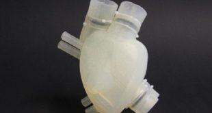 silikondan uretilen yapay kalp arastirmacilar tarafindan test edildi 310x165 - Silikondan Üretilen Yapay Kalp Araştırmacılar Tarafından Test Edildi!
