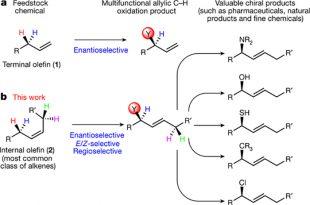 kimyacilar ilac arastirmalarini hizlandiracak kimyasal reaksiyonun haberini verdiler 310x205 - Kimyacılar İlaç Araştırmalarını Hızlandıracak Kimyasal Reaksiyonun Haberini Verdiler