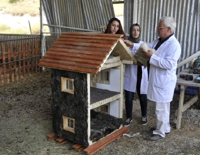 Selçuk Üniversitesi, Koyun Yününden Isı Yalıtım Malzemesi Geliştirdi