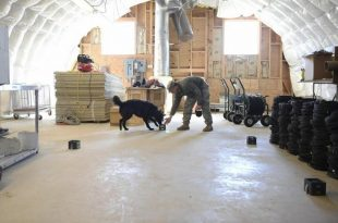 suc arastirma laboratuari kimyagerleri kopek birimini koku tespitinde egitmek icin cihaz gelistiriyor 310x205 - Suç Araştırma Laboratuarı Kimyagerleri Köpek Birimini Koku Tespitinde Eğitmek İçin Cihaz Geliştiriyor