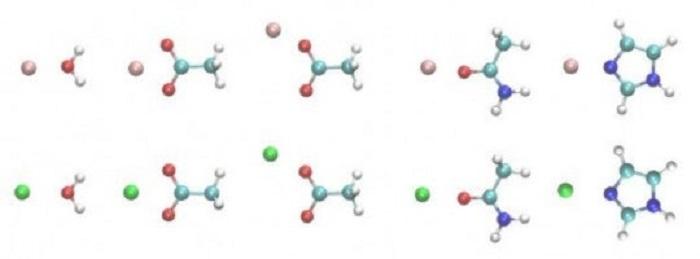 Güç Alanı Analizleri Protein – İyon Etkileşimlerine Dair İpuçları Sağlıyor