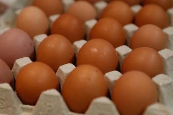 Japon Bilim İnsanları Tavuk Yumurtasının İçinde İlaç Üretiyor!