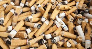 atik sigara izmaritleri yuksek performansli hidrojen depolama malzemesi olabilir mi 310x165 - Atık Sigara İzmaritleri Yüksek Performanslı Hidrojen Depolama Malzemesi Olabilir mi?