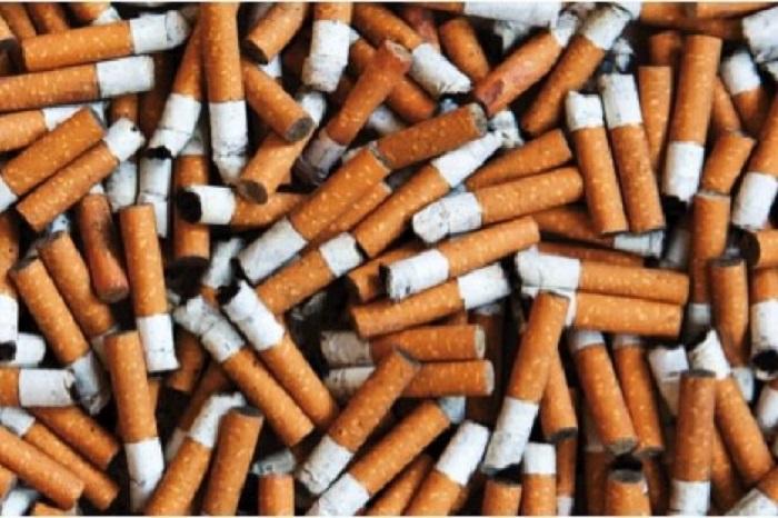 Atık Sigara İzmaritlerinin Tek Faydası Bulundu