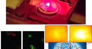 beyin kimyasinin gizemini cozen nanosensorler 310x165 - Beyin Kimyasının Gizemini Çözen Nanosensörler