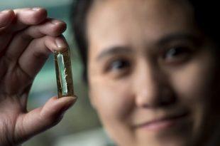 bir ogrenci yanlislikla 400 yil dayanan batarya uretti 310x205 - Bir Öğrenci Yanlışlıkla 400 Yıl Dayanan Batarya Üretti!