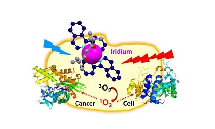 dinazorlarin neslini tuketen astereoidteki metal ile kanser hucreleri yok edilebiliyor - Dinazorların Neslini Tüketen Astereoid'teki Metal ile Kanser Hücreleri Yok Edilebiliyor