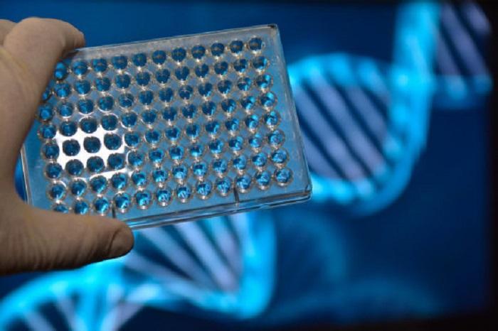 down sendromu icin yeni dna antenatal taramasi donusumsel bir ilerleme olarak gosterildi - Down Sendromu için Yeni DNA Antenatal Taraması, Dönüşümsel Bir İlerleme Olarak Gösterildi