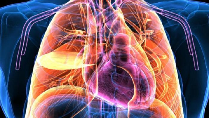 insan vucudundan elektrik ureten malzeme - İnsan Vücudundan Elektrik Üreten Malzeme!