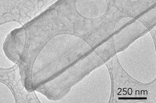 sisen bataryalar bilim insanlarinin detayli incelemesi altinda 310x205 - Şişen Bataryalar Bilim İnsanlarının Detaylı İncelemesi Altında!