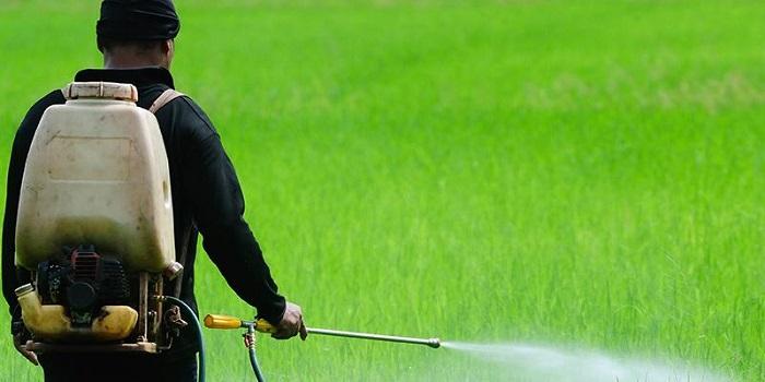 Tarım İlaçlarında Hortlayan Bir Kabus: Glifosat