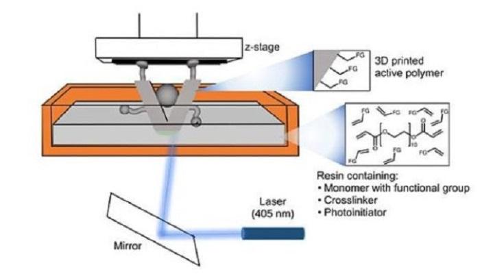 Tek Basamaklı 3D Baskıdan Katalizör Eldesi